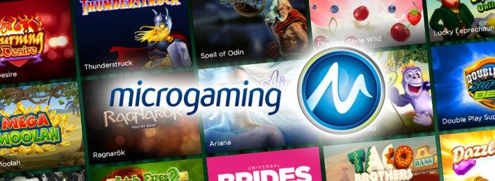 Spelsystem special Microgaming casino knights