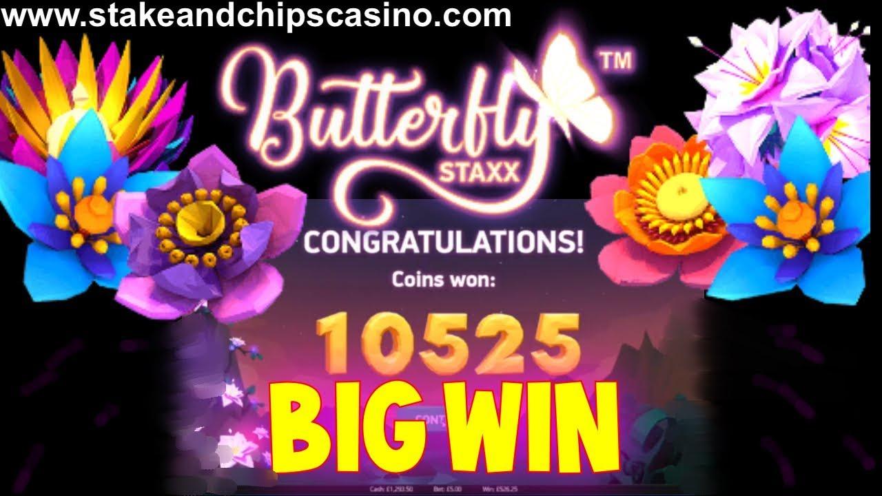 Spel hemma Butterfly 81749